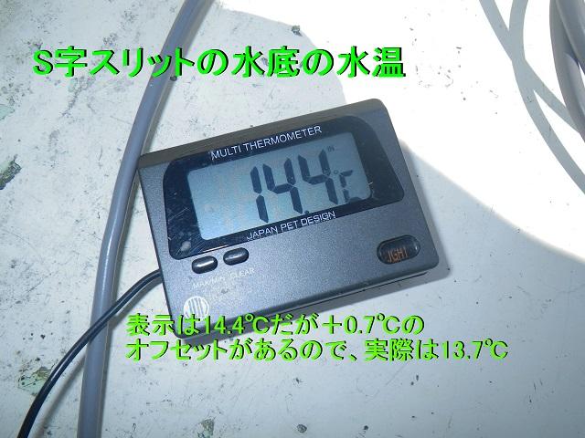 IMGP3800.jpg