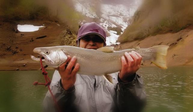 田子倉湖の大岩魚 63cm