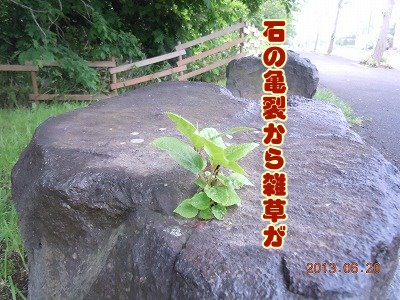 2012062302.jpg