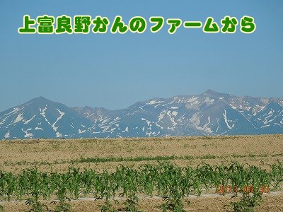 2013070112.jpg