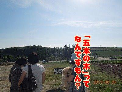 2013070114.jpg