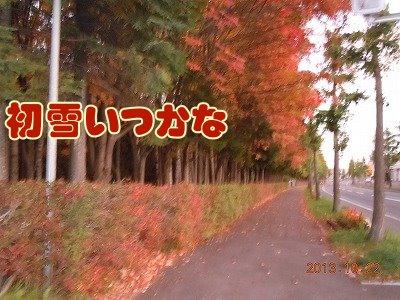 2013102201.jpg