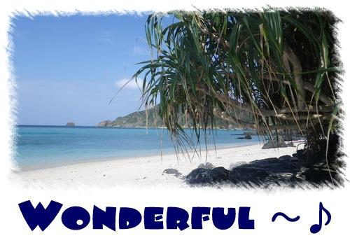 Wonderful~♪