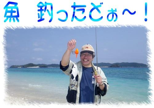 魚 釣ったどぉ