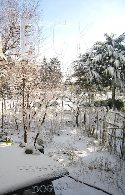初雪2009.2