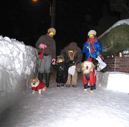雪明かり道行き