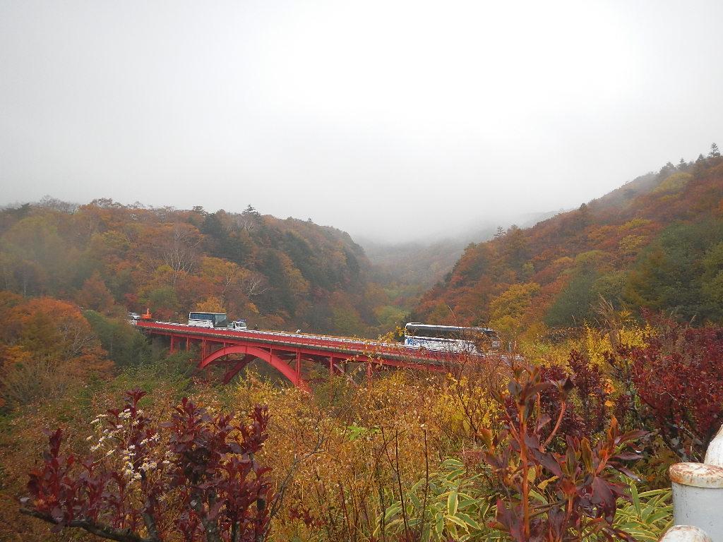 harumi2014-10 145