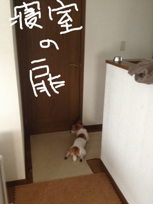 fc2blog_2013081310273830e.jpg