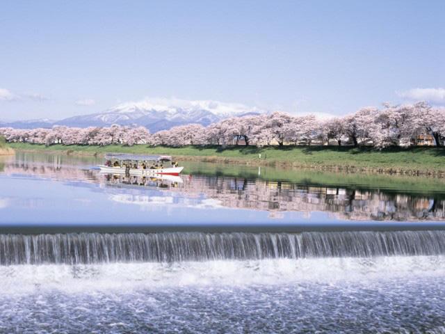 白石川堤一目千本桜景色