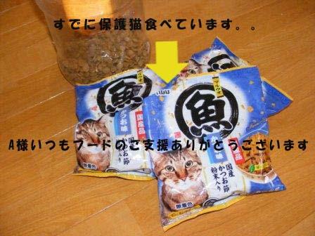 kifuのコピー
