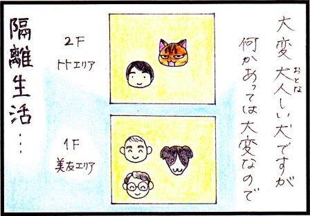 toto112-2.jpg