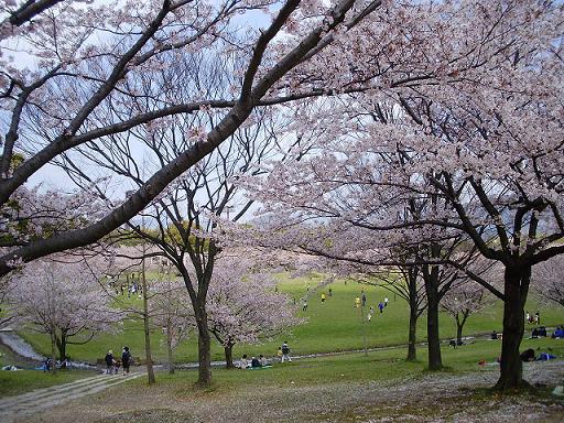 春日公園②
