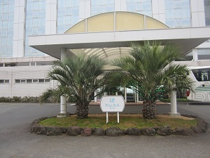919大磯プリンスホテル ブログ