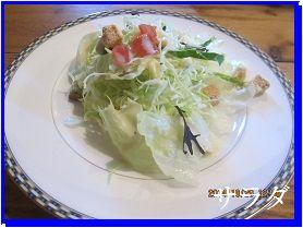 1029 サラダ ブログ