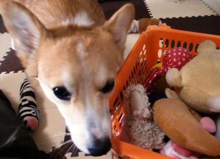 おもちゃ箱 4