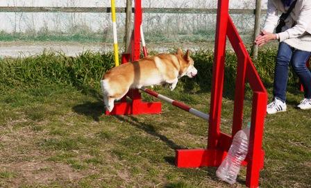 ジャンプとわ 2