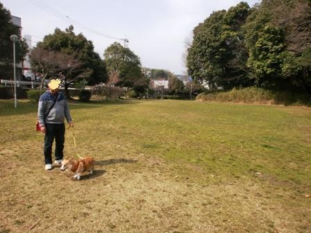 古墳公園 1