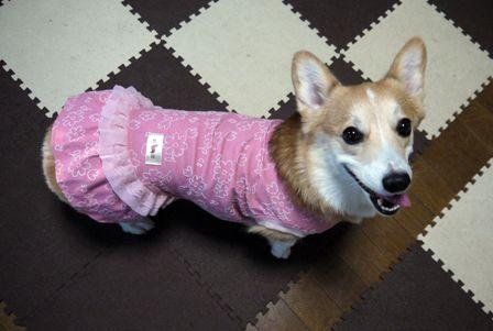 ピンクの服3