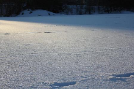ヨーテボリ2010雪03