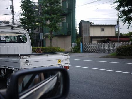 s-P1070041.jpg
