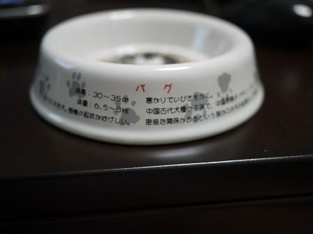 s-P1070567.jpg