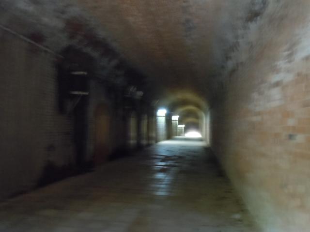 猿島 トンネル中