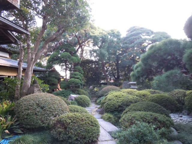 横山郷土館 庭