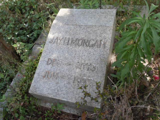 モーガンのお墓 その2
