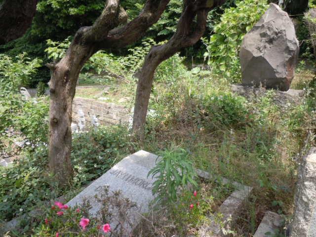 モーガンのお墓 その1