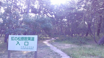 虹の松原散策道