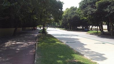 大濠公園道