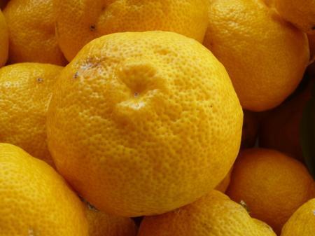 12月21日は柚子湯(冬至)の日です。