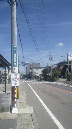 NEC_0251.jpg