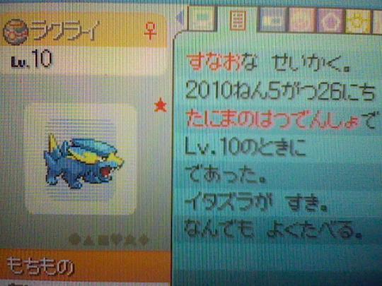 HNI_0017_20100527170456.jpg