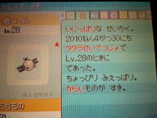 HNI_0042.jpg