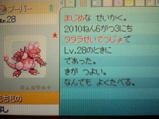 HNI_0046_20100603185444.jpg