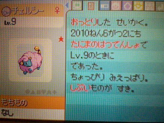 HNI_0056_20100604233406.jpg