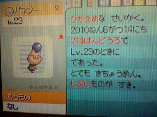 HNI_0075_20100618003609.jpg