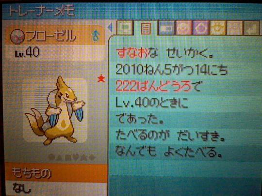 HNI_0089_20100516005655.jpg