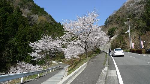 20130330 雨山坂 01