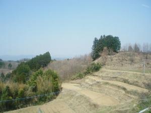 miyaji-taketa.jpg