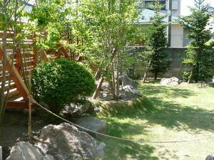 薪小屋から見た庭
