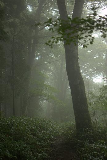 20110821-15.jpg