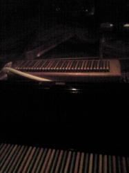 2010.2.2クロマチックフラット鍵盤3