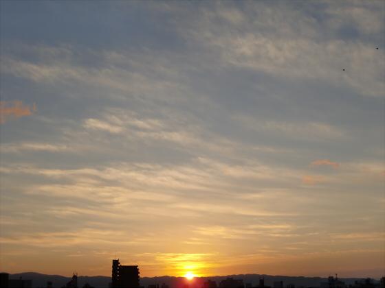 大阪近辺2013-02