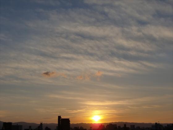 大阪近辺2013-05