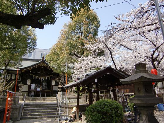 大阪で撮った桜2013-06