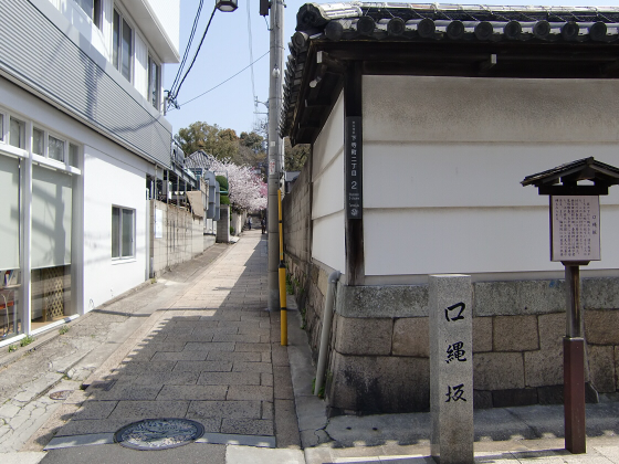 大阪で撮った桜2013-10
