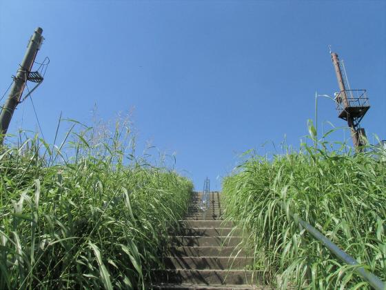 赤川仮橋9月下旬1-01