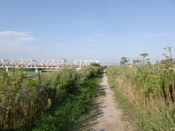 赤川仮橋2013年7月8月-02